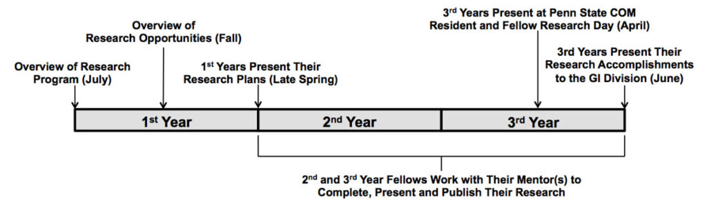 A timeline gives a visual overview of the Gastroenterology and Hepatology Fellowship Research Program, summarizing the information in the text above.